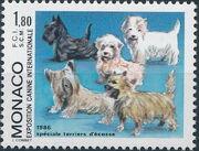 Monaco 1986 International Dog Show, Monte Carlo a