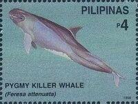 Philippines 1998 Marine Mammals Found in Philipines Waters h