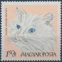 Hungary 1968 Domestic Cats e