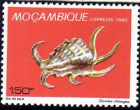 Mozambique 1980 Stamp Day - Maritime Shells of Mozambique a