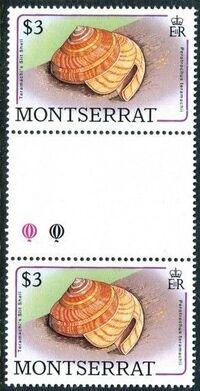 Montserrat 1988 Sea Shells gm