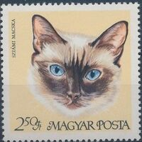 Hungary 1968 Domestic Cats g