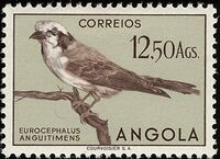 Angola 1951 Birds from Angola r