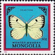 Mongolia 1986 Butterflies and Moths b