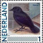 Netherlands 2011 Birds in Netherlands a28