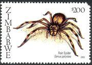 Zimbabwe 2003 Spiders b