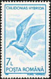 Romania 1991 Water birds j