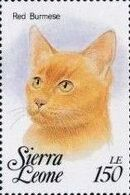Sierra Leone 1993 Cats of the World i