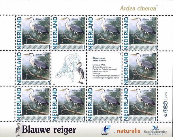 Netherlands 2011 Birds in Netherlands MS4
