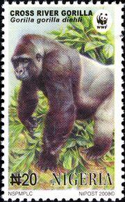 Nigeria 2008 WWF Cross River Gorilla a