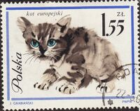 Poland 1964 European Cats g