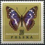Poland 1967 Butterflies e