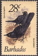 Barbados 1979 Birds i