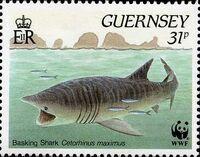 Guernsey 1990 WWF Marine Life c