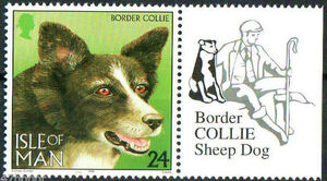 Isle of Man 1996 Dogs at Work b