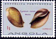 Angola 1974 Sea Shells e