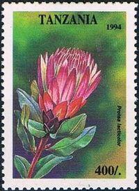 Tanzania 1995 Wild Flowers g