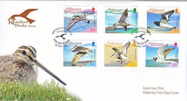 Alderney 2009 Resident Birds Part 4 (Waders) h