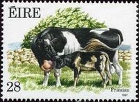 Ireland 1987 Irish Cattle b