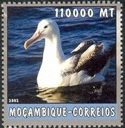 Mozambique 2002 The World of the Sea - Sea Birds 2 g