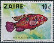 Zaire 1978 Fishes e