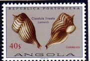 Angola 1974 Sea Shells s