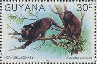 Guyana 1981 Wildlife b