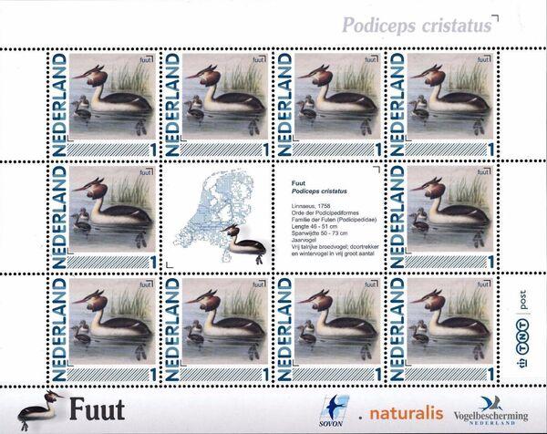 Netherlands 2011 Birds in Netherlands MS12