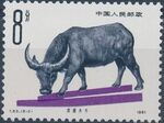 China (People's Republic) 1981 Cattle Breeds b