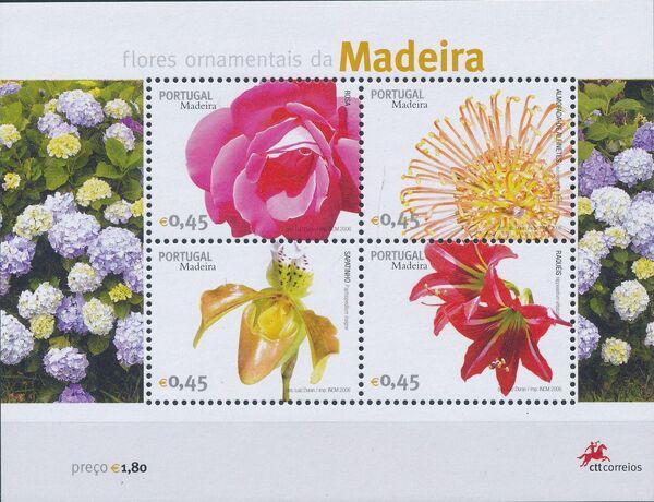 Madeira 2006 Madeira Flowers m