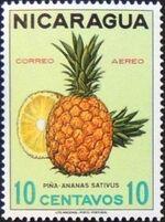 Nicaragua 1968 Fruits b