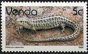 Venda 1986 Reptiles e