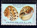 Angola 1981 Sea Shells Overprinted g.jpg