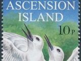Ascension 1999 WWF Fairy Tern