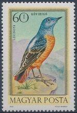 Hungary 1973 Birds b