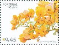 Madeira 2006 Madeira Flowers k