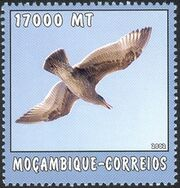 Mozambique 2002 The World of the Sea - Sea Birds 1 d