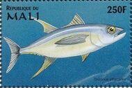 Mali 1997 Marine Life y
