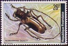 Rwanda 1978 Beetles j