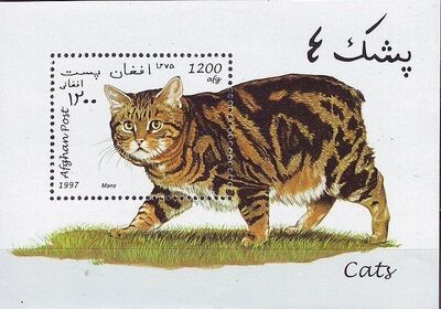 Afghanistan 1997 Cats SSa