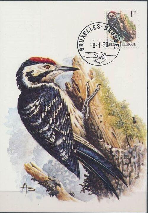 Belgium 1990 Birds (A) MCa