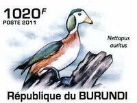 Burundi 2011 Birds of Burundi f