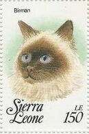 Sierra Leone 1993 Cats of the World s