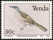 Venda 1991 Birds d