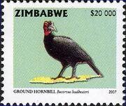 Zimbabwe 2007 Birds from Zimbabwe h