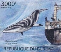 Burundi 2012 Protection of Nature - Save the Whales m