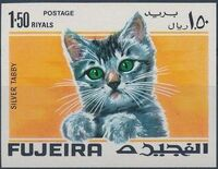 Fujeira 1967 Cats n