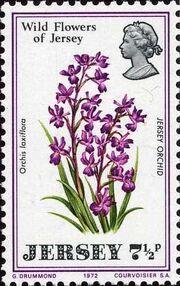 Jersey 1972 Jersey Wild Flowers c