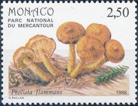 Monaco 1988 Fungi in Mercantour National Park c