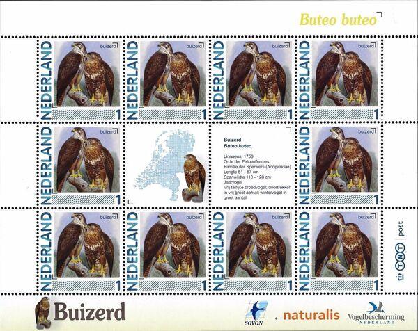 Netherlands 2011 Birds in Netherlands MS8